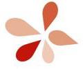schoonmaakbedrijf Aarts Cleaning Solutions onderhoud poetsbedrijf